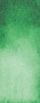 1-042 Hooker's green