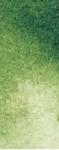 2-102 Sap green