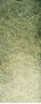 1-109 Undersea green