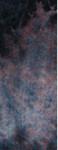 2-188 Shadow violet