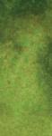 4-190 Serpentine genuine