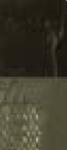 1-675 Cyprisk umbra